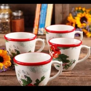 Set of 4 pioneer woman large mugs